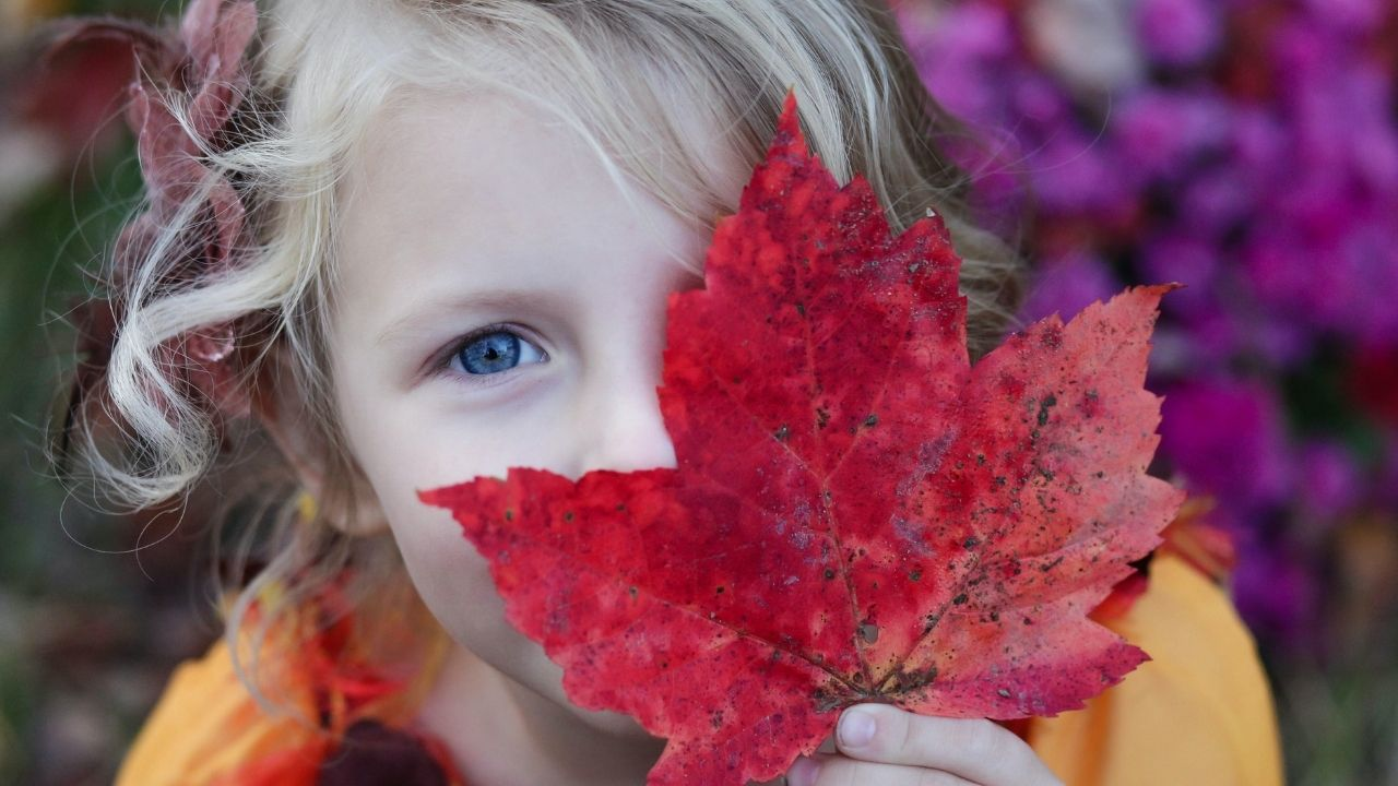 girl holding a maple leaf